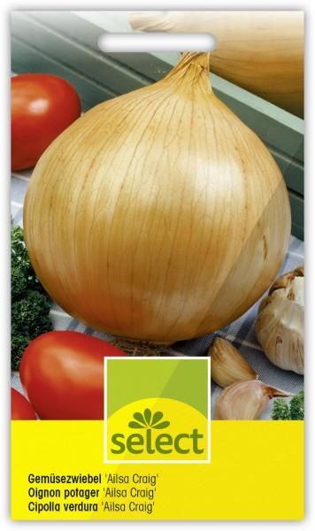 Gemüsezwiebel 'Ailsa Craig' - Allium cepa L.