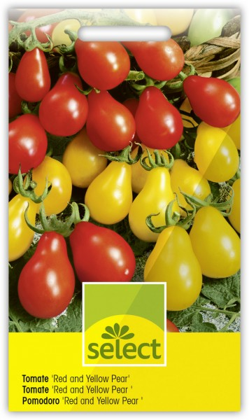 Tomate 'Red and Yellow Pear' - Lycopersicon esculentum