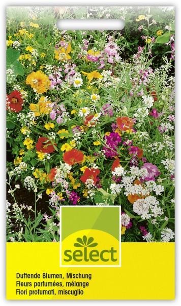Duftende Blumen, Mischung - Vorderseite