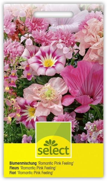 Der rosa Garten - Vorderseite