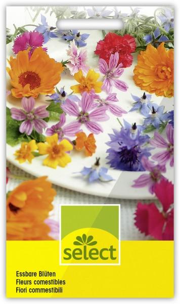 Essbare Blüten, Frohe Mischung - Vorderseite