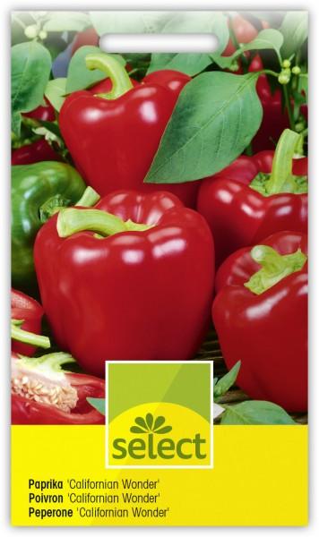 Gemüsepaprika 'Californian Wonder' - Vorderseite