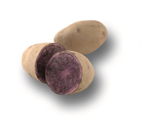 Saatkartoffeln 'Blaue St. Galler' 1 kg