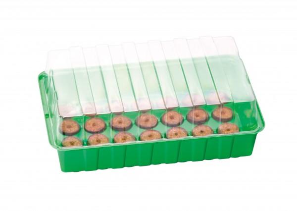 Mini-serre M Plus + 28 Pastilles de coco