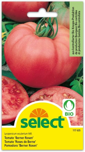 Bio Tomate 'Berner Rosen'