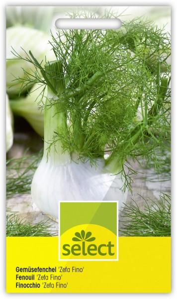 Gemüsefenchel 'Zefa Fino' - Vorderseite