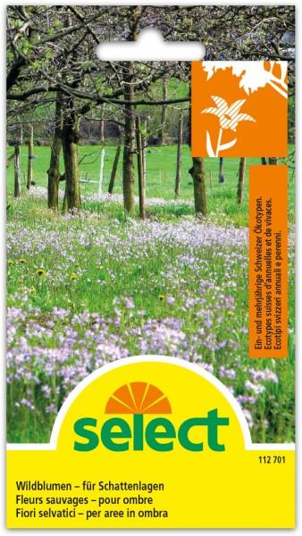 Wildblumen - für Schattenlage