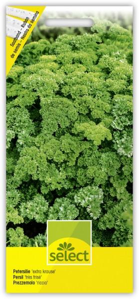 Petersilie 'extra krause' - 1 Saatband reicht für 5 m