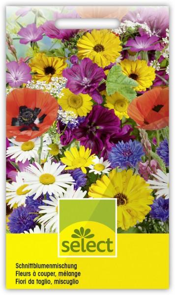 Schnittblumen, Prachtmischung - Vorderseite