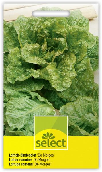 Lattich-Bindesalat 'De Morges' - Lactuca sativa longifolia