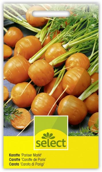 Karotte 'Pariser Markt' - Daucus carota