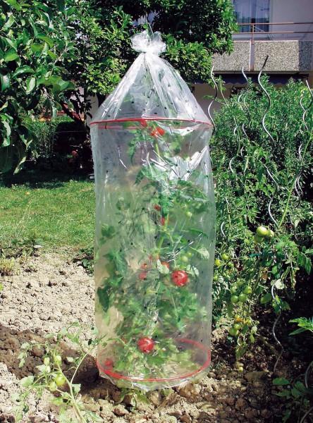 Tomatenreifehauben mit Abstandsringen (3er-Set)