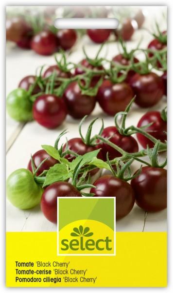 Tomate Black Cherry - Vorderseite