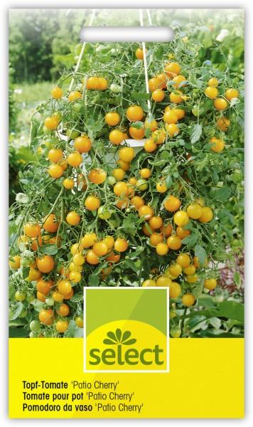 Topf-Tomate 'Patio Cherry' - Lycopersicon esculentum