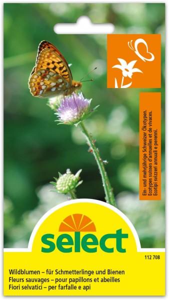Wildblumen-für Schmetterlinge und Bienen