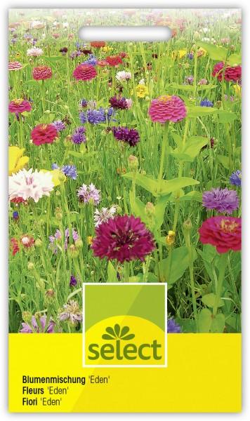 Blumenwiese 'Eden' - Vorderseite