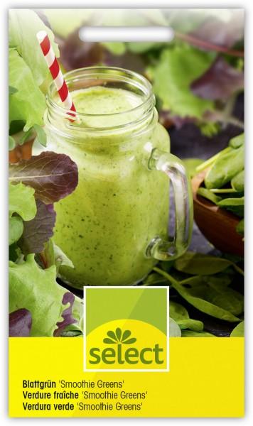 Blattgrün 'Smoothie Greens' - Vorderseite