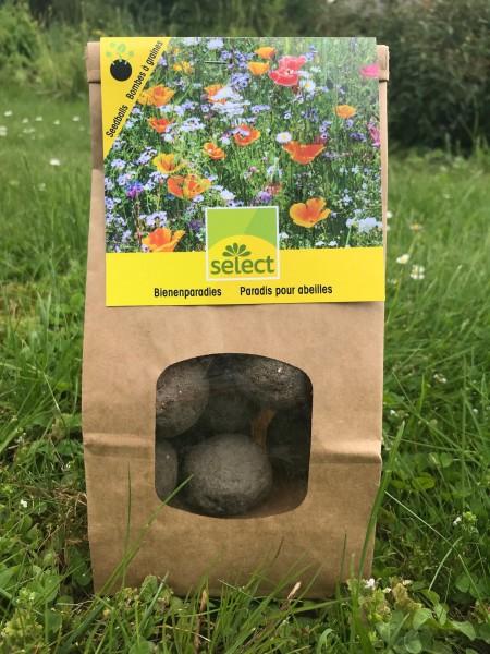 Paradis pour abelles avec bombes à graines
