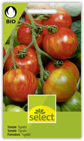 Bio Tomate 'Tigrella' - Vorderseite