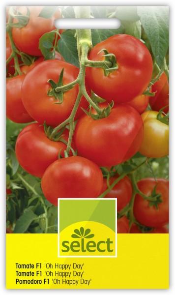 Tomate F1 'Oh Happy Day' - Lycopersicon esculentum