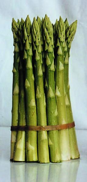 Grünspargel, 25 Stk.