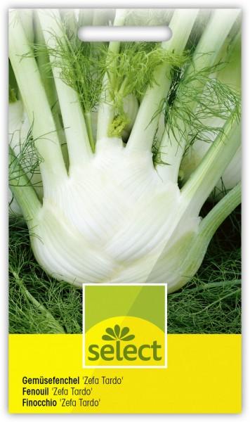 Gemüsefenchel 'Zefa Tardo' - Vorderseite