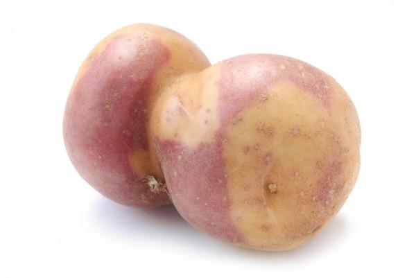 Plants de pommes-de-terre 'Miss Blush', 1 kg