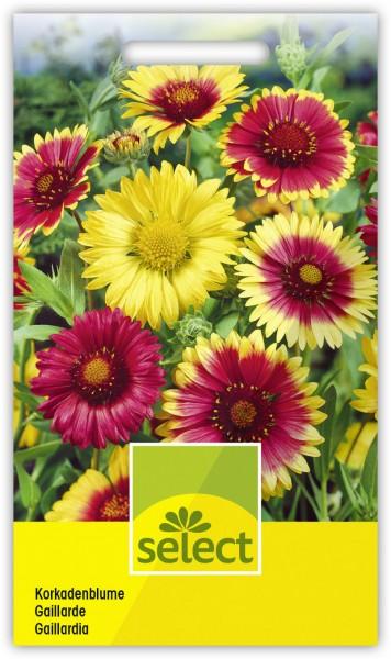 Kokardenblume, grossblumige Farbenmischung - Vorderseite