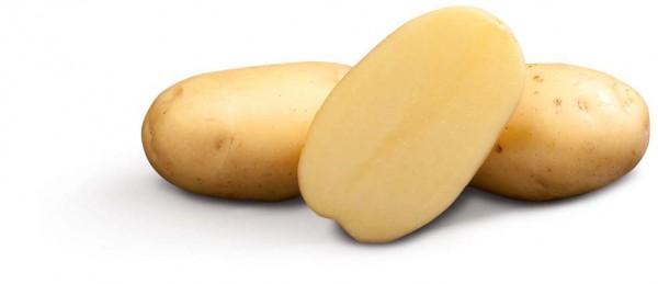 Saatkartoffeln 'Vitabella' Bio, 1 kg