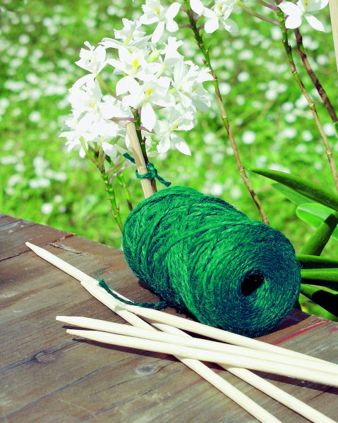 Cordeau de jute vert