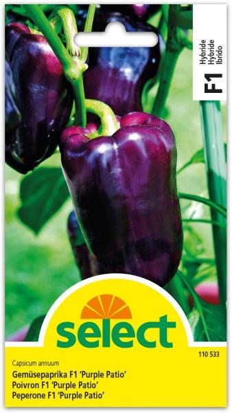 Gemüsepaprika F1 'Purple Patio'