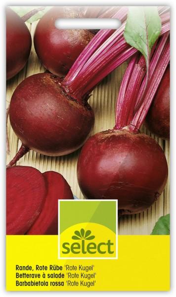 Rande, Rote Rübe 'Rote Kugel' - Beta vulgaris esculenta