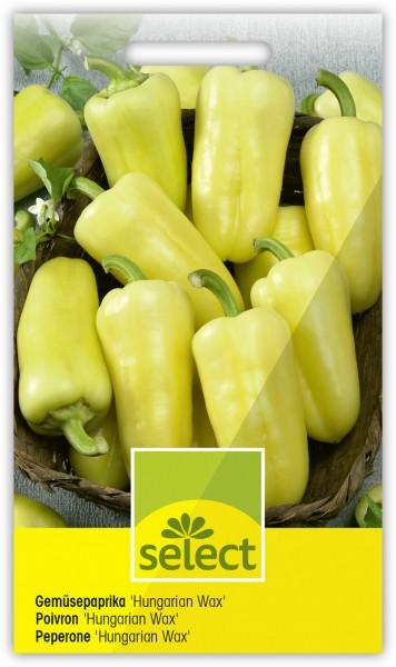 Gemüsepaprika 'Hungarian Wax' - Vorderseite
